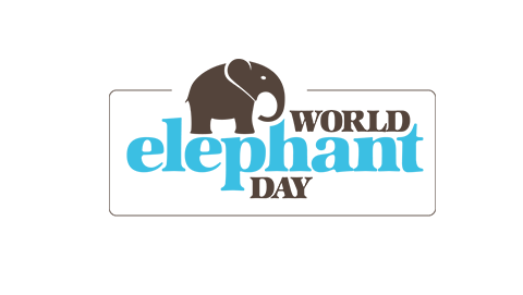 World Elephant Day logo